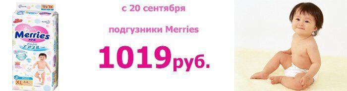 меррис 1019